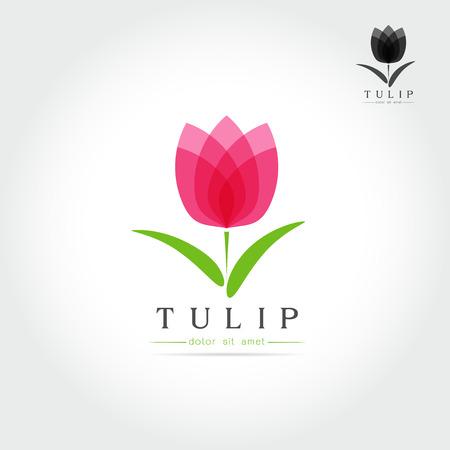 Brote del tulipán simple con diseño de las hojas de emblema o firmar en blanco Ilustración vectorial