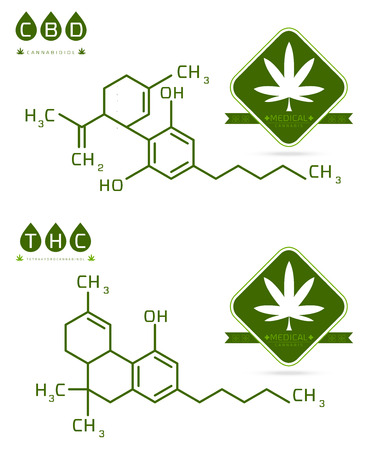Set of Thc and cbd formula. Cannabidiol and tetrahydrocannabinol molecule structure compound. Medical marijuana molecules vector illustration