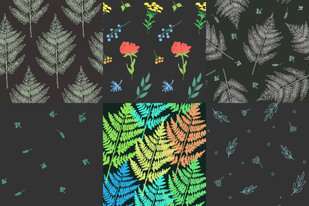 Collection of beautiful patterns with plants and flowers.  Amenities of nature. Vector illustration