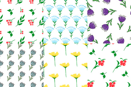 Set of stylish seamless patterns. Herb and flower. Background used for different types of design. Vector illustration