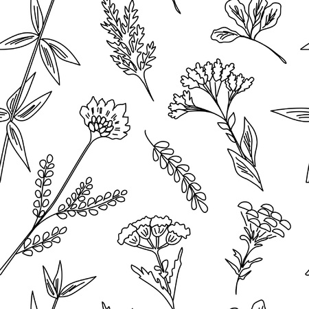 Seamless pattern with wildflowers. Floral background. Linear style vector illustration