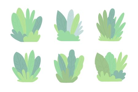 Set of compositions from large leaves and plants. Flora for the background