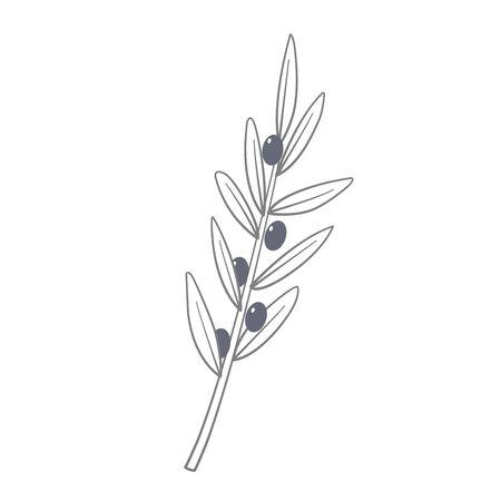 Monochrome olive branch vector. Symbol of Greece. Eco food. Greek cuisine