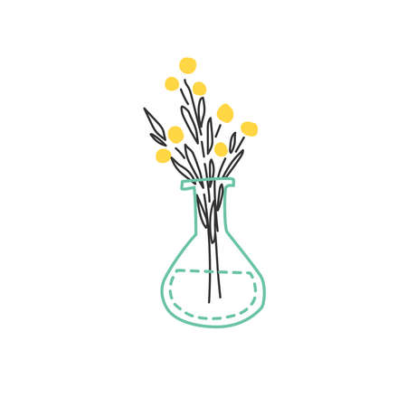 Bouquet of flowers in a flask. Hand drawn vector illustration. 일러스트