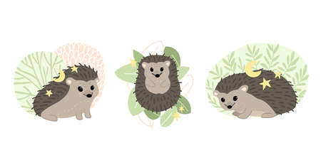 Set of cute hedgehogs. Forest animals. Flat vector cartoon illustration