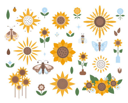 Collection of different types of sunflowers. Flat design, vector illustration Vecteurs