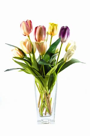 matherday: plastic flower in vase isolated on white background