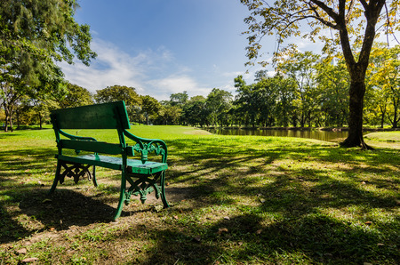 bench in public park with shadow of green tree and pond photo