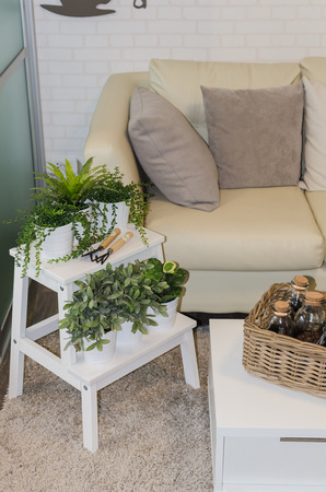 modern living: modern living room with plant at home Stock Photo