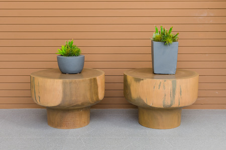 Plants in modern grey pot on round wood table with wood panel as background photo