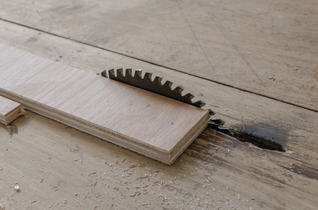 carpenter's sawdust: plywood on table saw for cutting at workshop