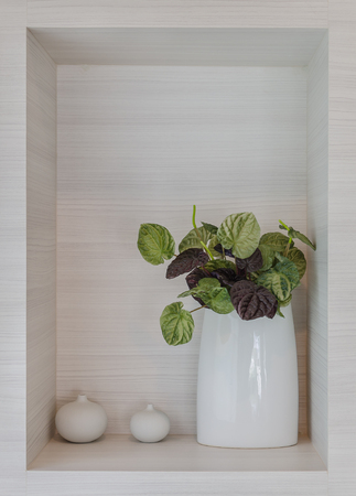 shelve: artificial plant in white ceramic vase with wooden shelve