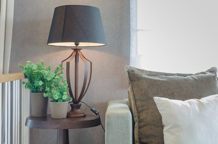 classic living room: vase of plant with wooden lamp on wooden table side and classic sofa in living room