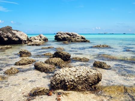 The Beach at Koh Larn Pattaya  II photo