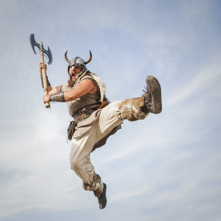 Vikings attack from sky