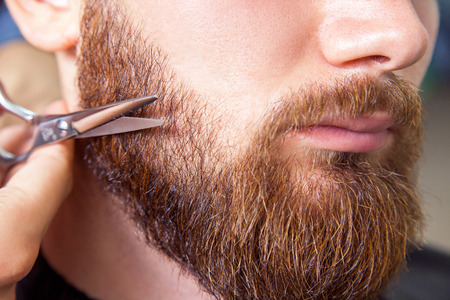 Barber with scissors shaving bearded man Stock Photo