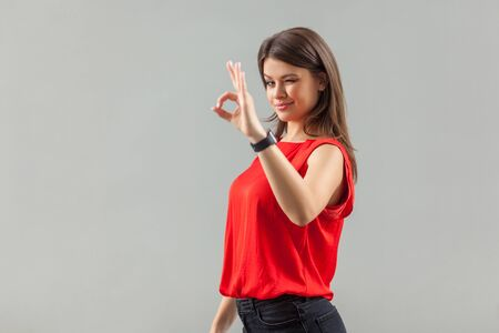 Ok. Portrait of funny satisfied beautiful brunette young woman in red shirt standing with Ok sing and looking at camera winking and smiling. indoor, studio shot, isolated on gray background. Reklamní fotografie