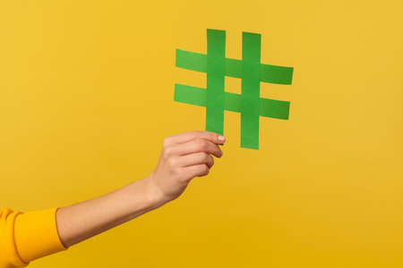 Internet trends, famous network content. Closeup of hand holding hashtag sign, sharing tagged message, popular idea, blogging and viral web post. indoor studio shot isolated on yellow background
