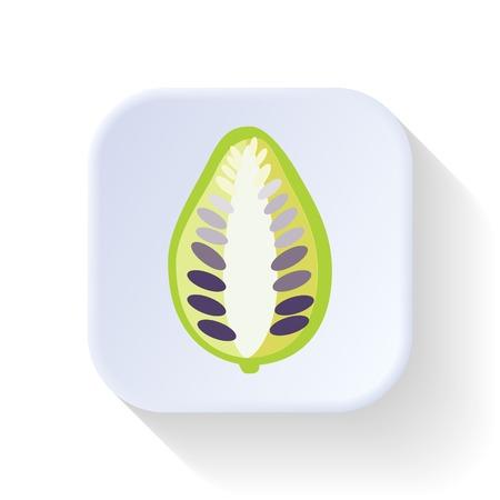 noni fruit: Noni fruit vector graphic illustration design art