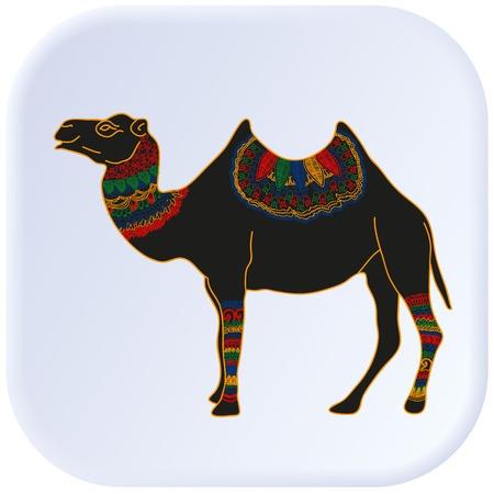 camel desert: Camel Egypt color vector graphic illustration design art Illustration