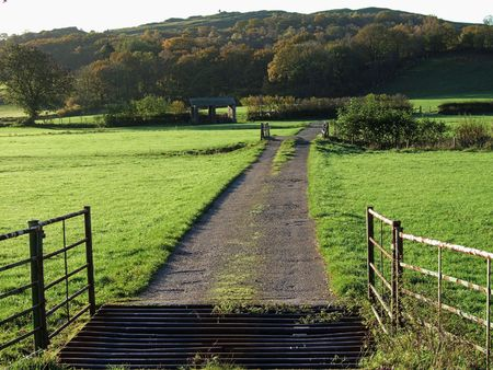 cattle grid: Open gate & cattle grid in morning Autumn light Stock Photo
