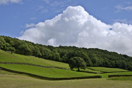 cumulus cloud: Un torreggianti Cumulus nube al di sopra di una scena rurale Estate Archivio Fotografico