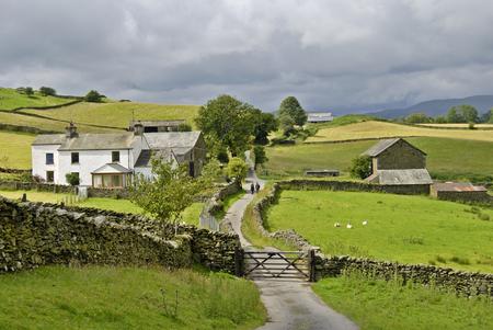 A couple walking along a country lane as it passes through a farm in the English lake District