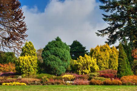 An English garden in rich Autumn colours Stock Photo - 2029299