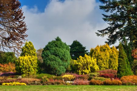 An English garden in rich Autumn colours