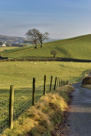 A country road in the English Lake District with a wire and wooden post fence, surrounded by grazing land photo