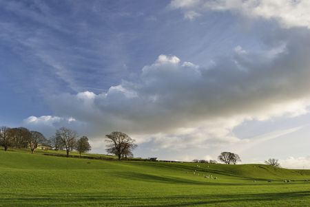 Sheep grazing on a sunny slope in early Spring Stock Photo - 2633084