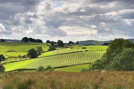 typically english: A typically English Sunny rural farmland scene