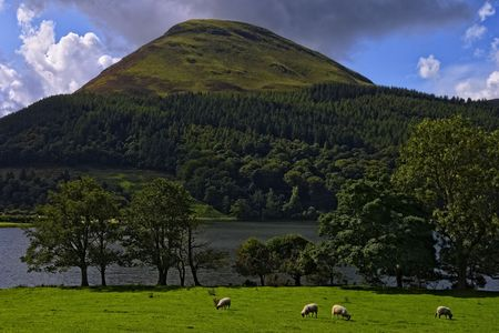 Loweswater in the English Lake District with grazing sheep in the foreground Stock Photo - 3912833
