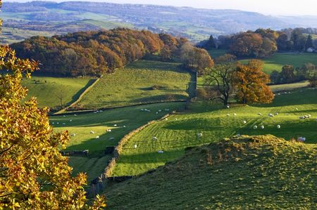 Typical English rural scene with rolling countryside and grazing sheep with Autumn colours photo