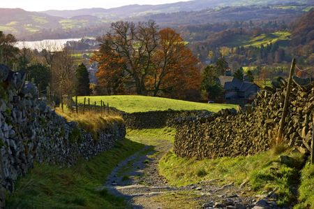 drystone: A sunny lane bordered by dry-stone walls. A tree in Autumn colours is in the backgound. Ambleside in the English lake district Stock Photo