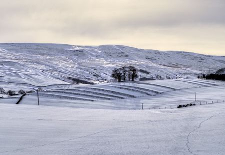 Snow covered farmland in the Eden valley, Cumbria, England