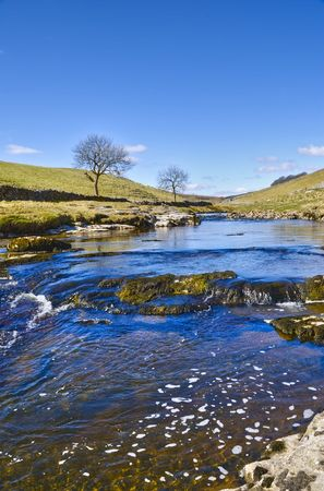 Wharfe river in Wharfdale at Yorkshire Dales National Park in Northern England. Stock Photo - 4868428