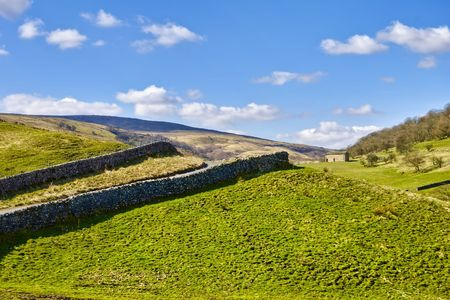 wharfedale: Scenic view of dry stone walls in countryside, Wharfedale, Yorkshire Dales National Park England.