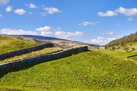 wharfedale: Vista panor�mica de los muros de piedra seca en el campo, Wharfedale, Yorkshire Dales el Parque Nacional de Inglaterra. Foto de archivo
