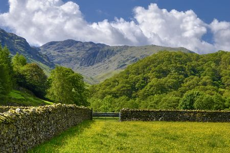 borrowdale: Dry stone wall and field in Borrowdale Valley with mountains in background, Lake District National Park, Cumbria, England.