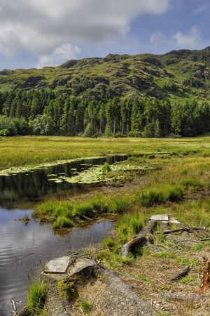 Scenic view of Harrop Tarn with forested mountainside in background, Lake District National Park, Cumbria,  England. Stock Photo - 5929684