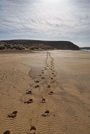 receding: Scenic view of human footprints receding on sandy beach under cloudscape.