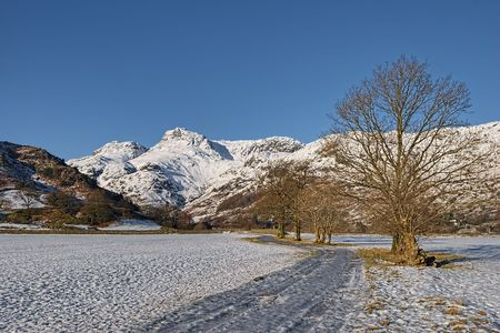 lake district england: Winter landscape with trees and snow covered mountains.