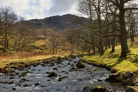 Scenic view of Watendlath Beck or river in Lake District National Park, Cumbria, England. Stock Photo - 6923061