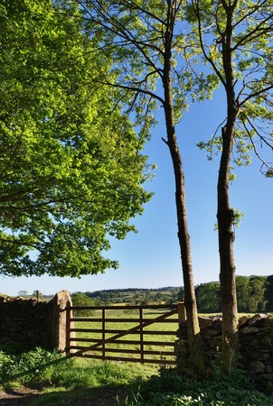 drystone: A gate and a dry-stone wall bordered by trees Stock Photo
