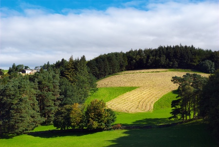 A ploughed field and woods in the Yorkshire Dales near Sedbergh