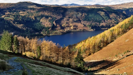 Autumn Larches on a hill above Thirlmere, in the English Lake District National Park photo