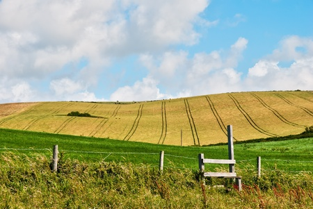 a wooden stile and cornfield in Dorset, England photo