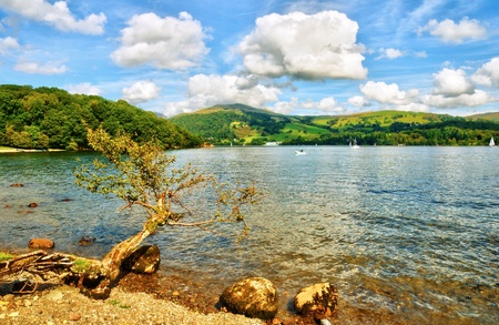 A fallen branch and rocks on the shore of lake, Windermere  in the English Lake District National Park Stock Photo - 10780617