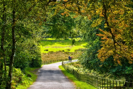 sunlit: A couple walking on a lane through early Auumn woodland in England Stock Photo